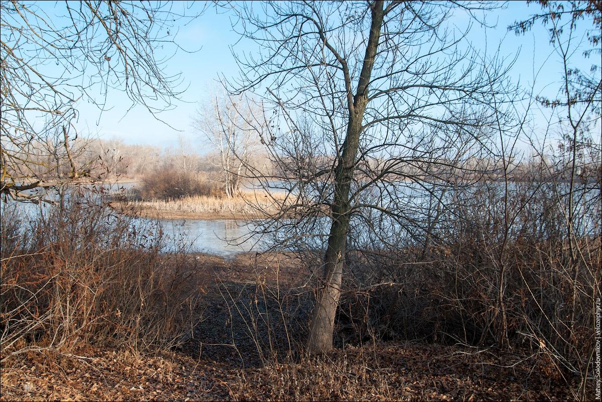 Островок на озере Большой Ильмень