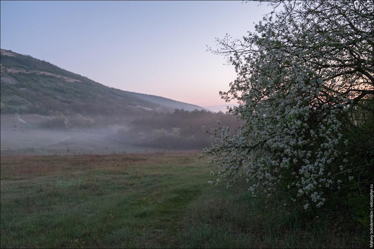 Рассвет и туман