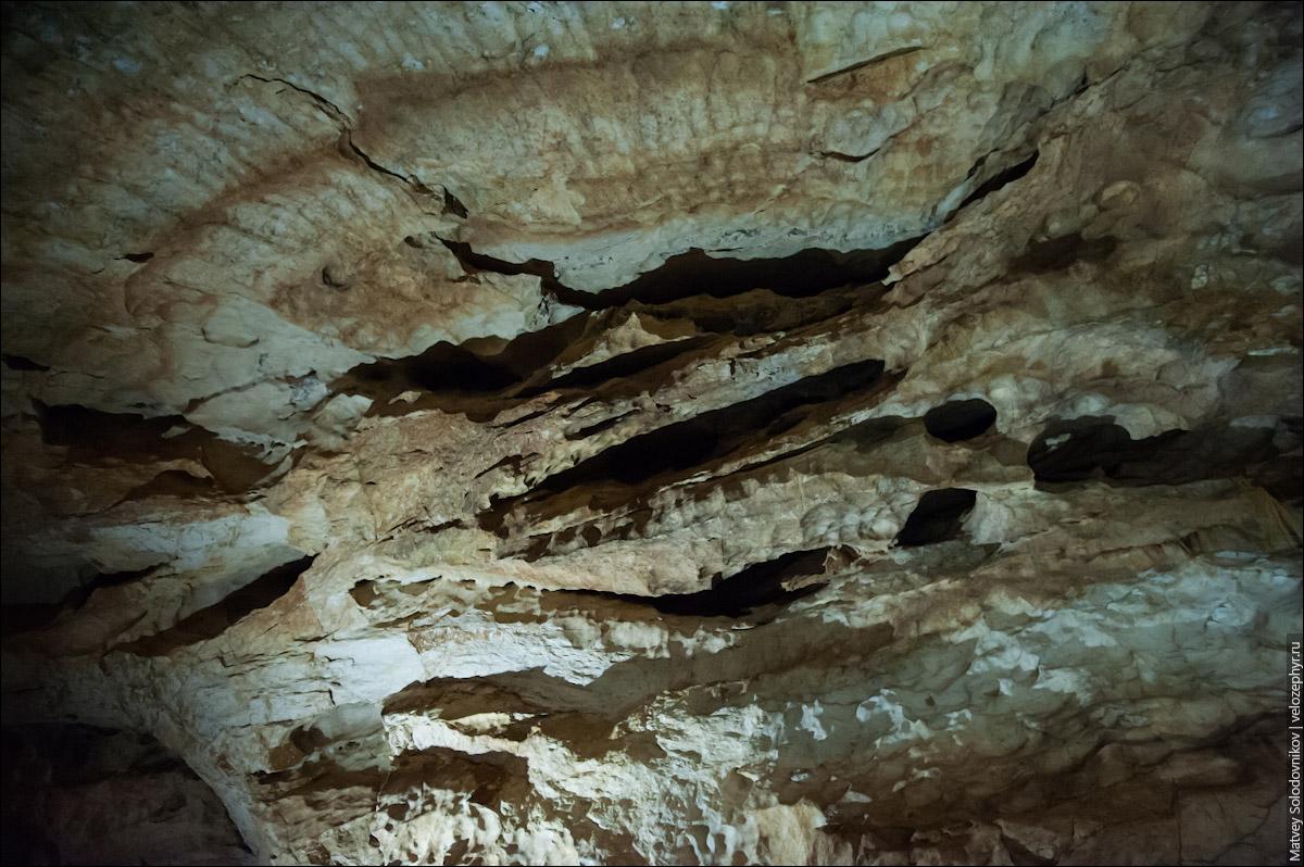 Чьи-то когти впились в потолок