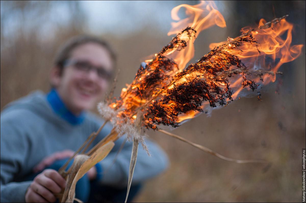 Камыш отлично горит