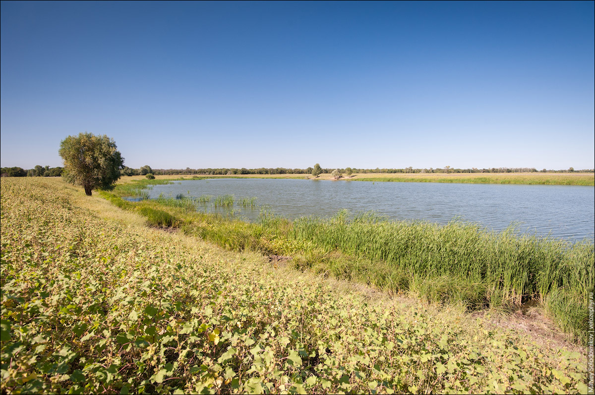 Озеро Калмычка