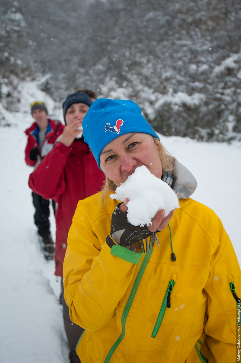 Едят снег